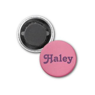 Magnet Haley