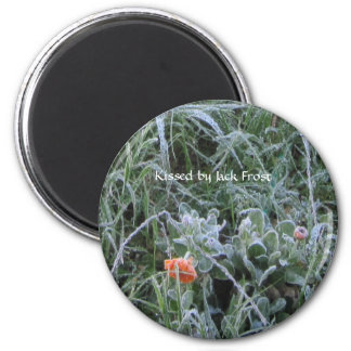 Magnet:  Kissed by Jack Frost 2 Inch Round Magnet