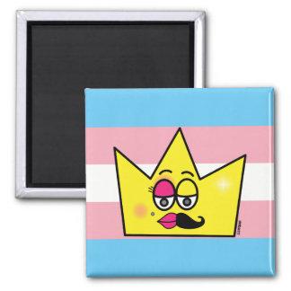 Magnet of Refrigerator - Transgênero Transexual