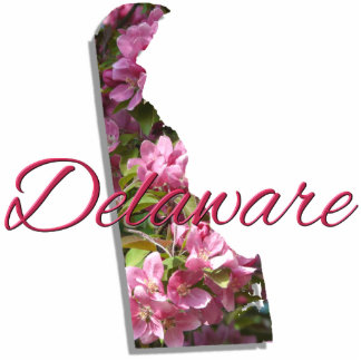 Magnet - Sculptural - DELAWARE Photo Sculpture Magnet