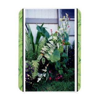 Magnet-Tropical Garden Magnet