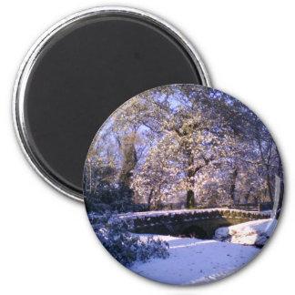 Magnet: Winter Wonderland Magnet