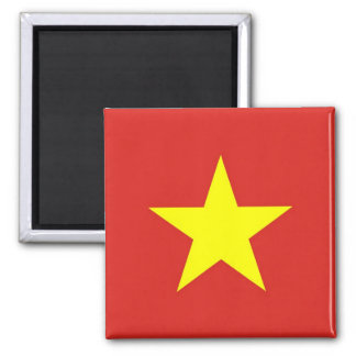 Magnet with Flag of Vietnam
