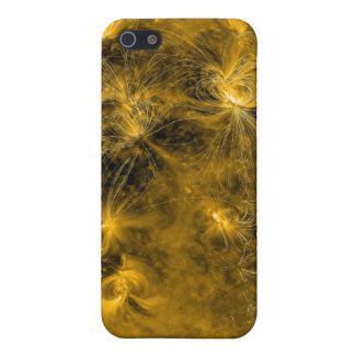 Magnetic field lines on the Sun iPhone 5 Case