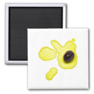 Magnets | Olive&Oil