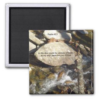 Magnets: Stream Psalm Magnet