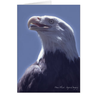 Magnificent Eagle Card