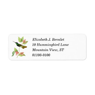 Magnificent Hummingbird Return Address Label