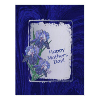 Magnificent Iris Blossoms Mothers Day Wishes Postcard