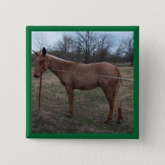 Magnificent Mule! Pin / Button