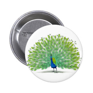 Magnificent Peacock Art 2 Inch Round Button