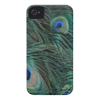 Magnificent Peacock Feathers iPhone 4 Case