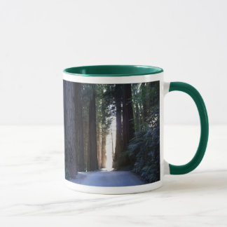 Magnificent Redwoods Mug