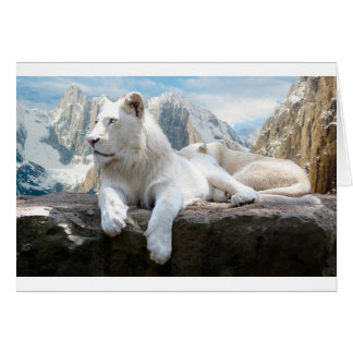 Magnificent White Tiger Mountain Backdrop Card