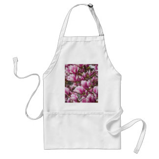 magnolia blooming  on tree standard apron