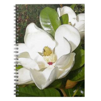 Magnolia Blossom Notebooks