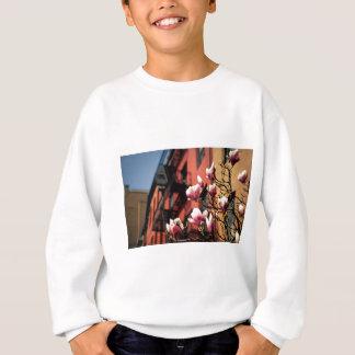 Magnolia Blossoms - New York City Sweatshirt