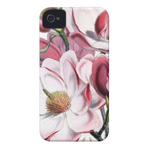 Magnolia Botanical Blackberry Cases