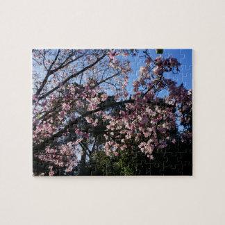 Magnolia dawsoniana #2 Jigsaw Puzzle