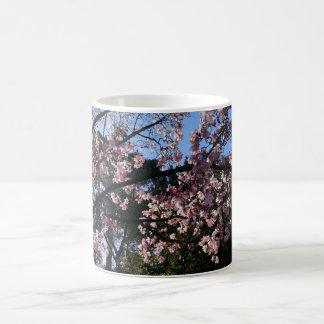 Magnolia dawsoniana #2 Mug