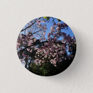 Magnolia dawsoniana #2 Pinback Button