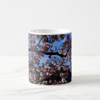 Magnolia dawsoniana #3 Mug