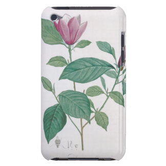Magnolia discolor, engraved by Legrand (colour lit Barely There iPod Covers
