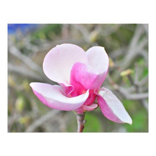 Magnolia Flyer Design