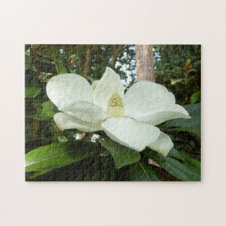 Magnolia Grandiflora Photo Puzzle with Gift Box