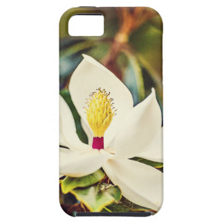 Magnolia in Bloom iPhone 5 Covers