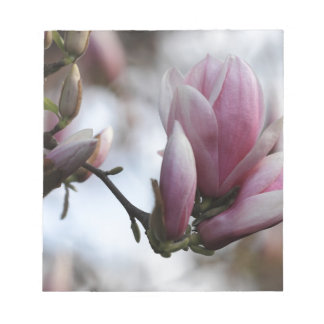 magnolia in bloom notepad