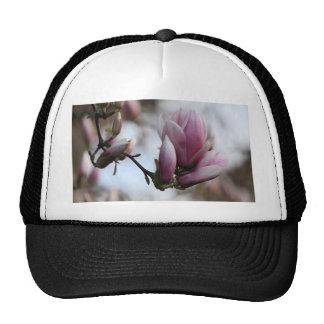 magnolia in bloom trucker hat