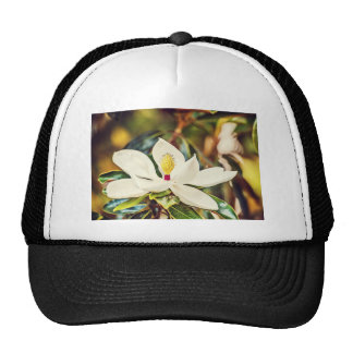 Magnolia in Bloom Trucker Hat