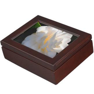 Magnolia Light Memory Boxes