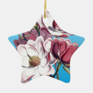 Magnolia On Blue Ceramic Star Ornament
