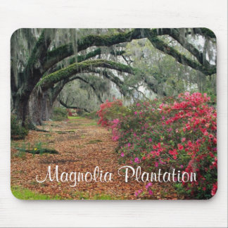 Magnolia Plantation / Charleston SC Mousepad