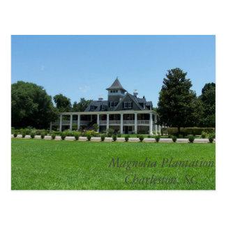 Magnolia Plantation Postcard