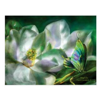 Magnolia Postcard