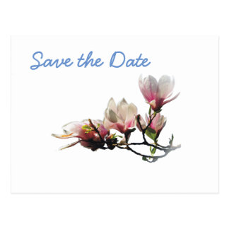 Magnolia Wedding Day Theme Save the Date Postcard