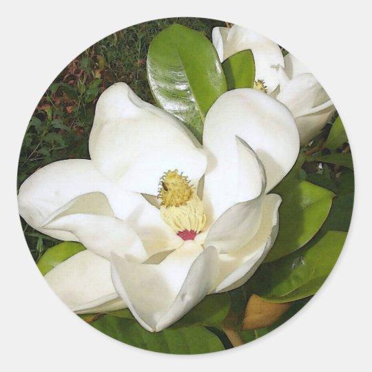 Magnolia White Classic Round Sticker