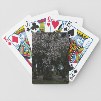 Magnolias Forever Bicycle Playing Cards