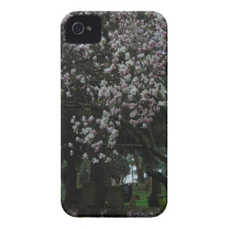 Magnolias Forever iPhone 4 Case-Mate Cases