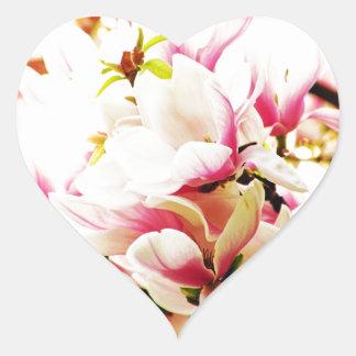 Magnolias in the sun heart sticker