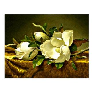 Magnolias on Gold Velvet Cloth, fine art painting Postcard