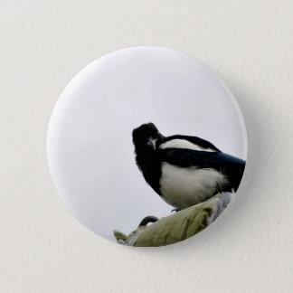 Magpie 2 Inch Round Button