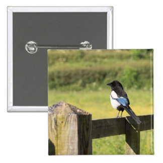 Magpie 2 Inch Square Button
