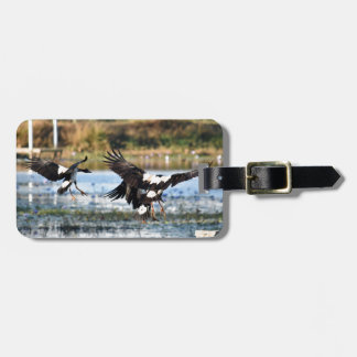 MAGPIE GEESE QUEENSLAND AUSTRALIA LUGGAGE TAG