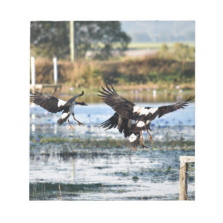 MAGPIE GEESE QUEENSLAND AUSTRALIA NOTEPAD