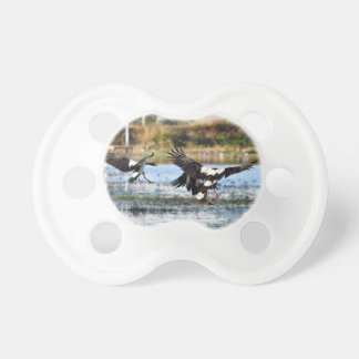 MAGPIE GEESE QUEENSLAND AUSTRALIA PACIFIER