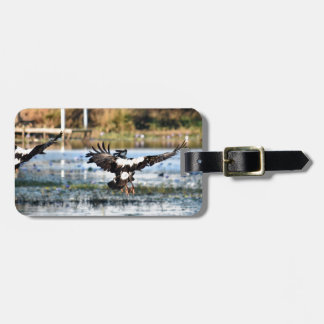 MAGPIE GEESE RURAL QUEENSLAND AUSTRALIA LUGGAGE TAG